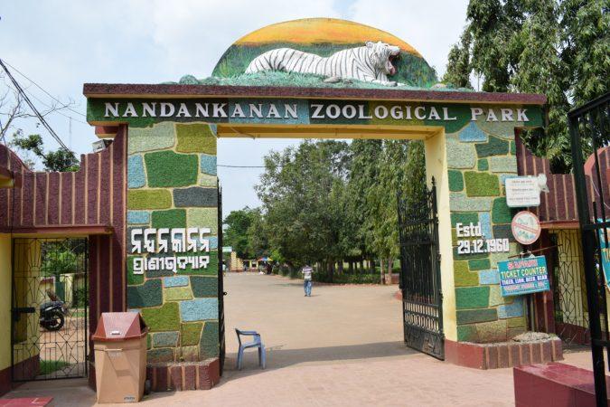 Nandankanan Zoological Park, Bhubaneswar: Best Zoo In India
