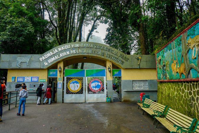 Padmaja Naidu Himalayan Zoological Park, Darjeeling: Best Zoo In India