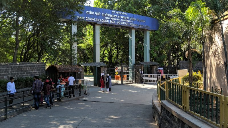 Rajiv Gandhi Zoological Park, Pune: Best Zoo In India
