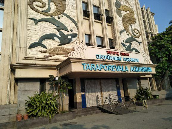 Taraporevala Aquarium: Place To Visit In Mumbai