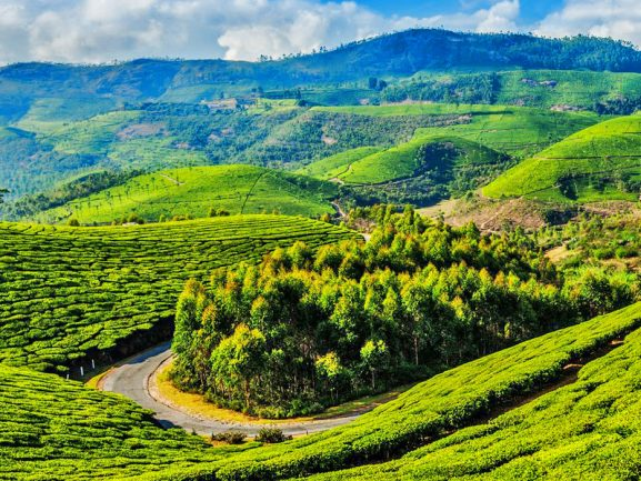 Coonoor Best Honeymoon Place In India