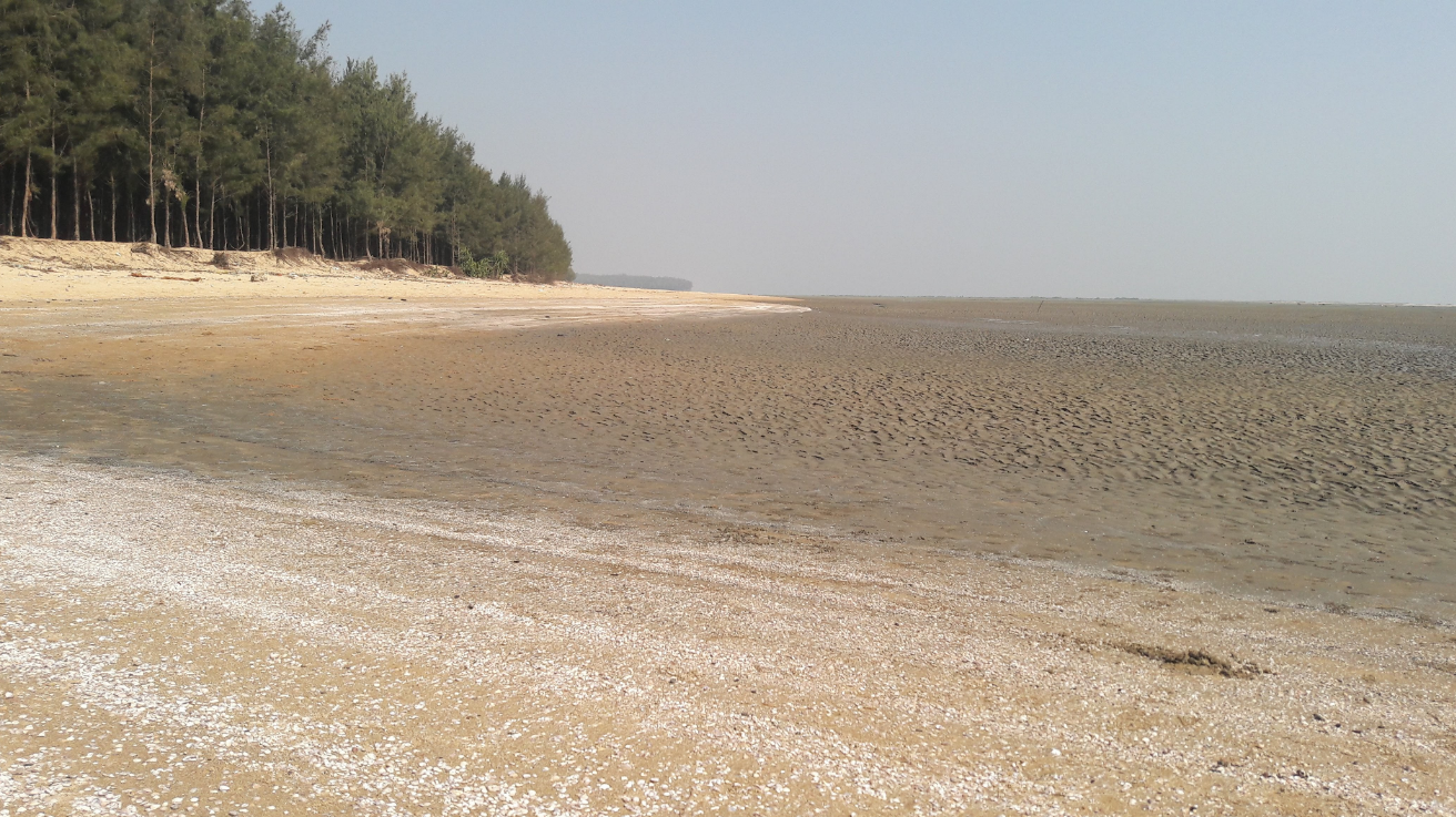 Chandipur, Odisha Best Beach In India
