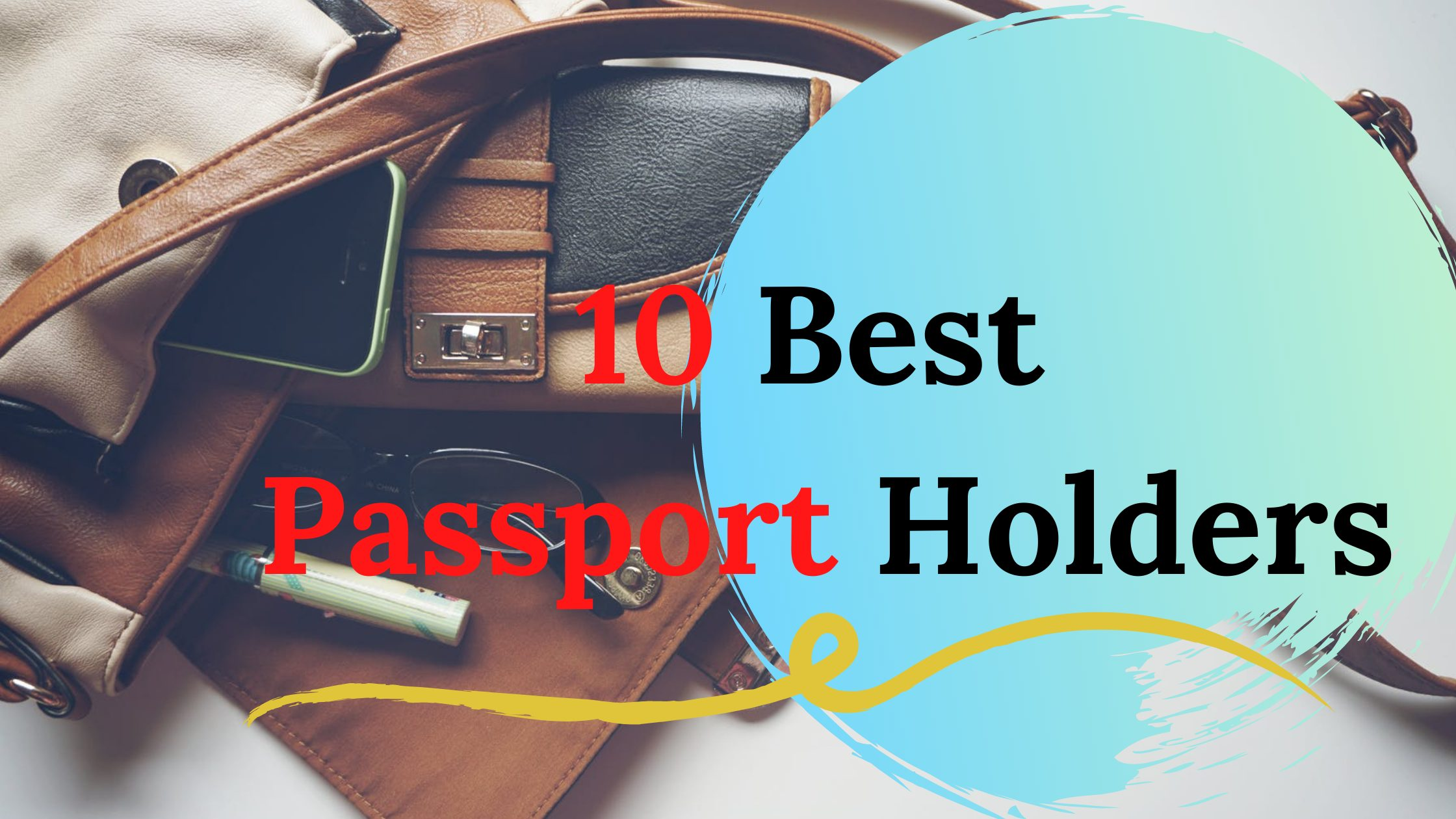 10 Best passport handler