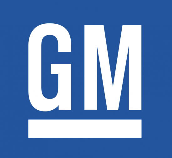 General Motors India Private Limited: Automobile Company