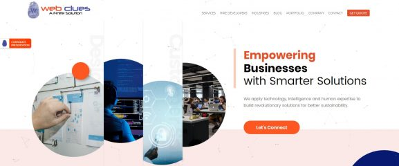 Web Clues: Software Company