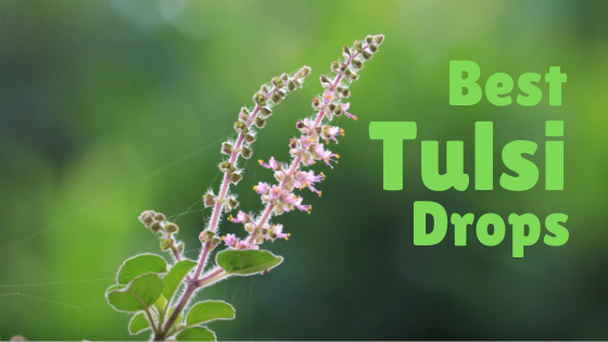 Best Tulsi Drops