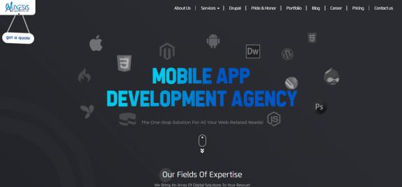 Auxesis Infotech - best web development companies in delhi
