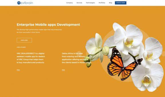 Nextbrain Technologies - 10 best web development companies in bangalore